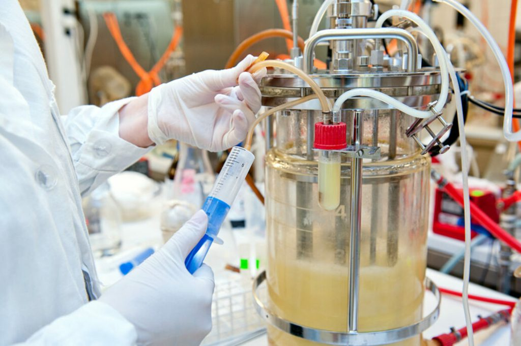 enzyme contract manufacturing