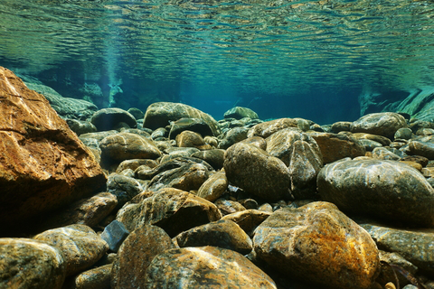 Rocks beneath the surface of a pond or a lake