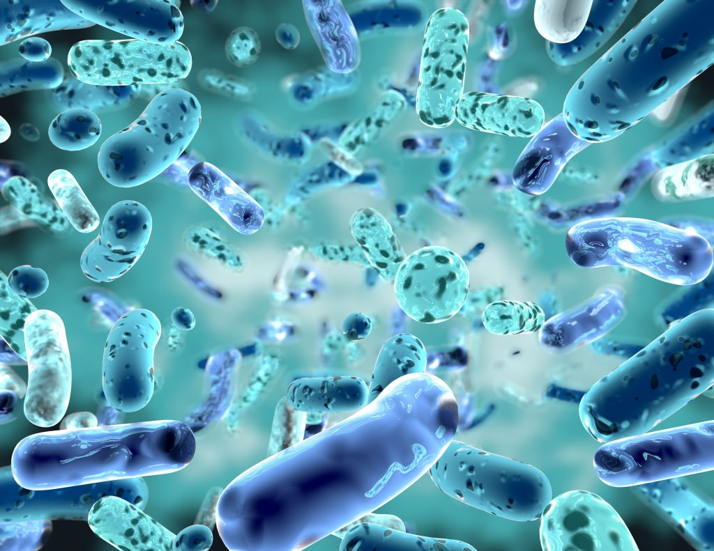 Bio Enzymatic Cleaners